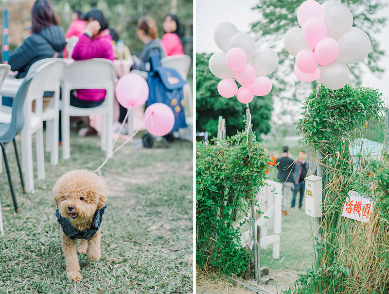 01_Ti-Lifestyle-Hong-Kong-Wedding-BigDay-Flora-Happy-Garden-Outdoor-Farm-Casa-Lohas-028